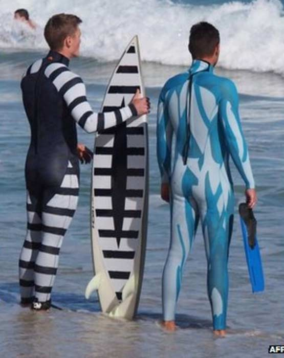 study: Wetsuit color and shark attack correlation