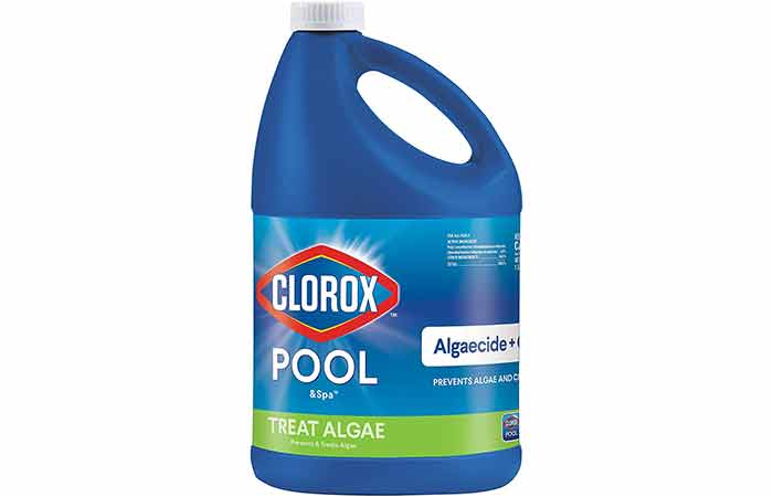 Clorox pool and spa algaecide